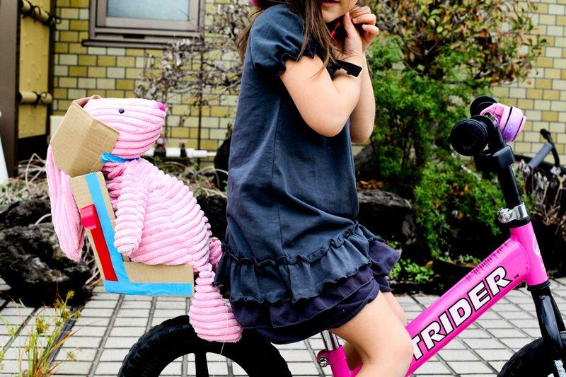 Bikeseat-101
